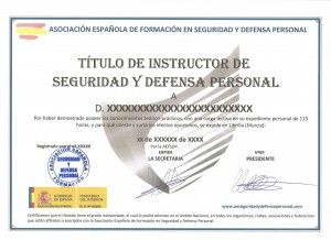 CARGA LECTIVA INSTRUCTOR DSP