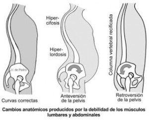 columna-vertebral-y-pilates